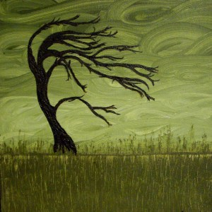 """""""After the Storm"""" Painting by Holly Anderson From verycoolphotoblog.com"""