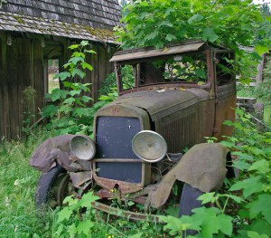 """""""Old Truck in Weeds"""" Photo by Pat Corrigan From flickr.com"""